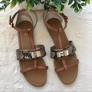 Coach snakeskin Harriet leather T strap sandals 8